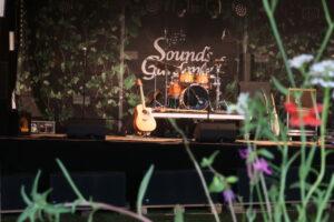 Bühne mit Pflanze