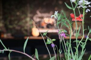 Pflanzen mit Bühne